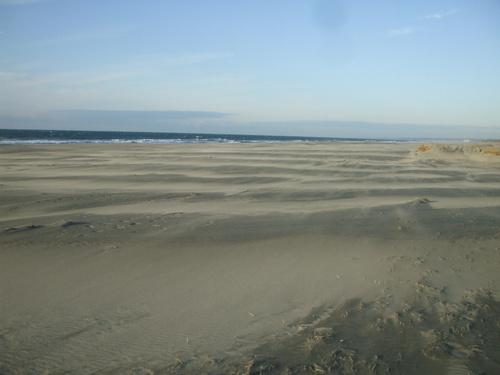 今年は砂が良く飛んでます