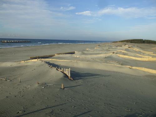 中田島の海岸と堆砂垣!